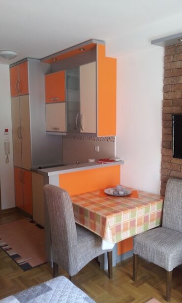 Apartment for rent: 1 soba, 24 kv. m sq. m., Vrnjacka Banja