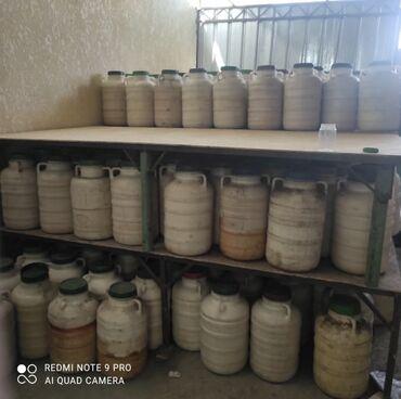 Продукты питания - Кыргызстан: Таза Бал. Токтогулдун Кара унгой деген Совхоздон, 100% кепилдик таза