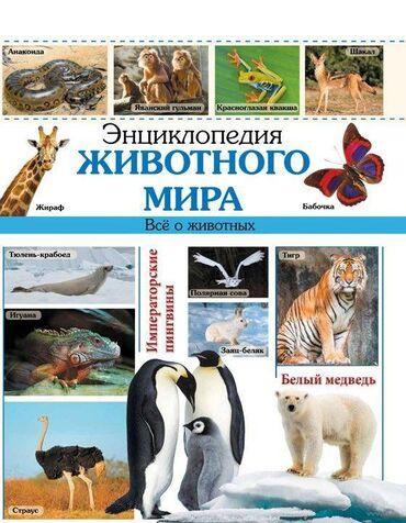 мир розеток бишкек в Кыргызстан: Энциклопедия животного мира