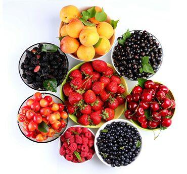 манго фрукт цена бишкек в Кыргызстан: Принимаю заказы на свежие ягоды  Абрикос, вишня, черешня, красная, смо