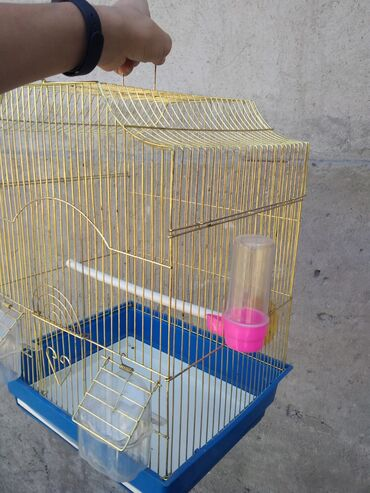 Клетка для попугая, в отличном состоянии10/10В комплекте: 2 кормушки