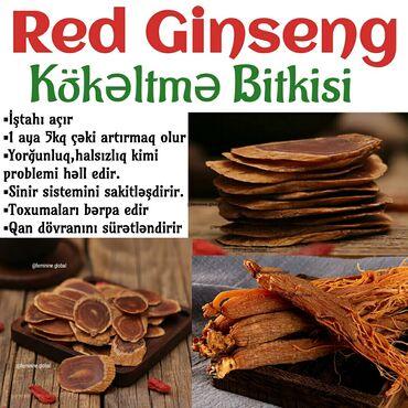 """qadın üçün dəri krosovkalar - Azərbaycan: Red ginseng (jenşen)⚪Kilo almaq üçün """"Red Ginseng Bitkisi""""Nə tozu nə"""