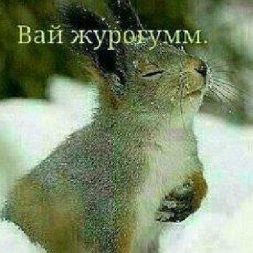 салон beauty club в Кыргызстан: Массаж Ош. Эртеменен 9:00дон тунку саат 1:00го