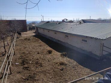 Недвижимость - Бактуу-Долоноту: 70 кв. м 4 комнаты