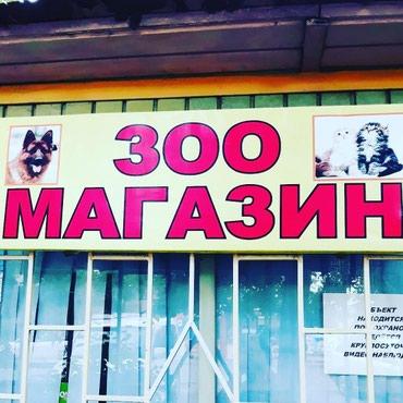 Зоомагазин Восток-5 в Бишкек