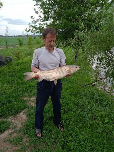 Внимание открылась платная рыбалка не далеко от города в селе военно