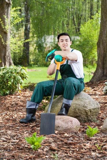 Требуется садовники!! 05561237 73 в Бишкек