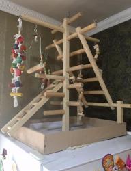 Игровая площадка для попугая в Бишкек