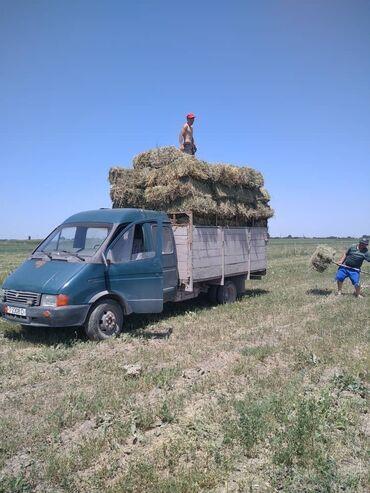газель бишкек in Кыргызстан | ГАЗ: Газель дизель мотор муссо 3куб