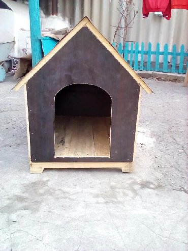 бесплатные собаки в Кыргызстан: Бутка для собак