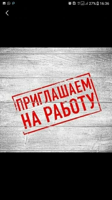 alfa romeo gtv 18 mt в Кыргызстан: Кассир. Без опыта. 5/2