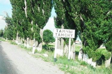 Продаю участок на иссык куле,село в Бишкек