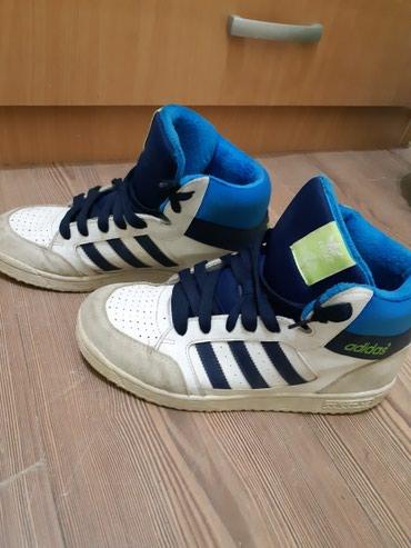 Ženska patike i atletske cipele | Kragujevac: Adidas patike, original, zenske, br.39-40 U odlicnom stanju