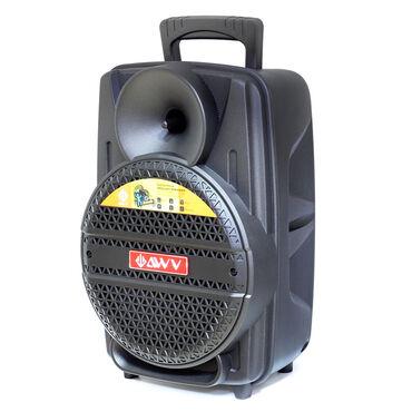 Zvučnici i zvučni sistemi | Srbija: Karaoke Zvucnik AWV TL-08BProfi zvučnik AVV Tl-08B BT Full Bass. U