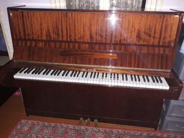 Mingəçevir şəhərində Piano və fortepianolar