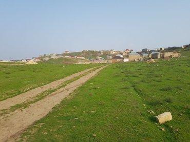 Tecili olaraq sulutepe cicek qesebesinde ferdi yawayiw ucun 30 sot в Хырдалан
