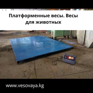 Весы для животных в Бишкек