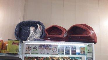 Большой выбор лежанок и полулежанок в зоомагазине островок элфина.  в Бишкек