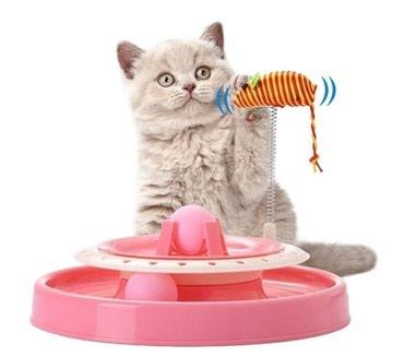 Pishikler ucun Teze oyuncaq.Catdirilma movcuddur