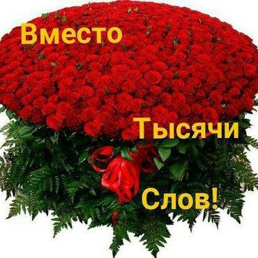 Требуются  садовники  Постоянная работа  Хороший доход Гибкий график в Бишкек