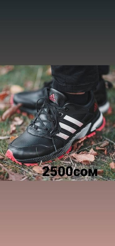 sportivnye brjuki adidas в Кыргызстан: Adidas maraton