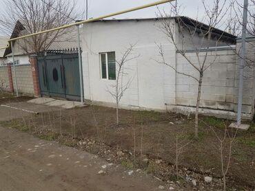 продам теленка в Кыргызстан: Продается дом 4 кв. м, 3 комнаты