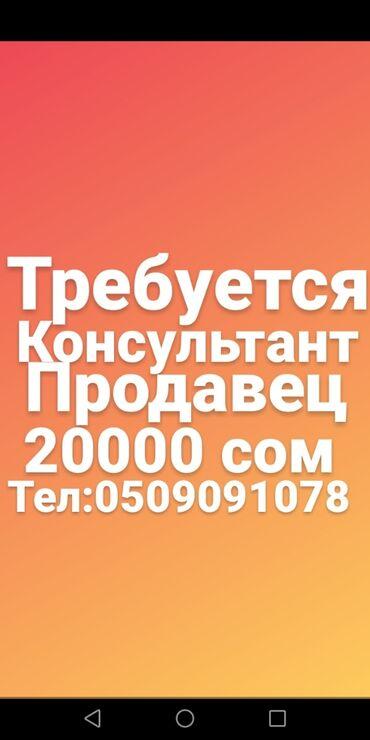 краскопульт в бишкеке в Кыргызстан: Продавец-консультант. Без опыта. 5/2