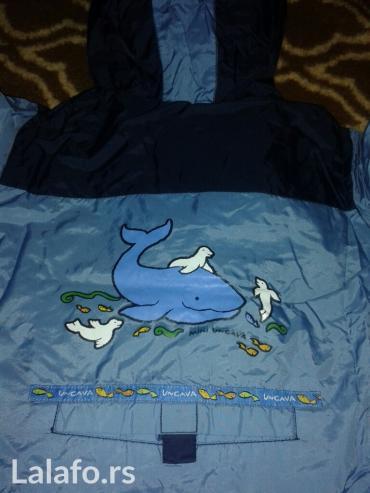 Suskavac jaknica,unutra postavljena,plave boje,slika s kitom i fokama - Novi Sad