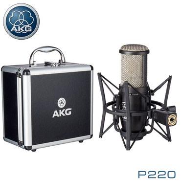 Микрофон:Студийный вокальный конденсаторный микрофонЧастотная