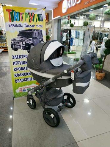 adamex barletta 3в1 в Кыргызстан: Модульные коляски от Adamex 3в1 от 32000с