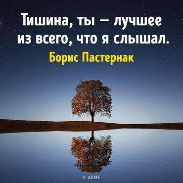 дезодорант алоэ эвер шилд в Кыргызстан: Куплю листья алоэ. Алоэ. Листья алоэ