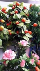 bitkiler - Azərbaycan: Suni bitkiler . buyurun sifariw edin.çatdrilma var anbardan satiş
