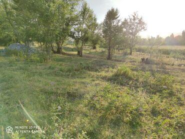 живопись пейзажи природы в Кыргызстан: Продам 10 соток Для сельского хозяйства от собственника