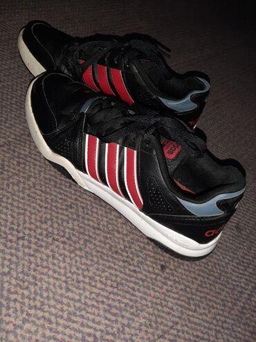 Dečije Cipele i Čizme - Veliko Gradiste: Muske original Adidas patike u dobrom stanju,broj pise na slici,jedini