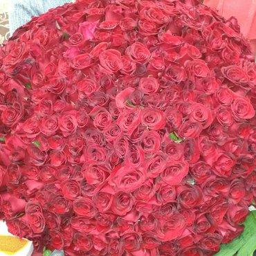 Розы в больших количествах в Бишкек