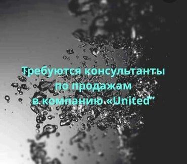 """требуется торговый агент в компанию """"Elevit"""" требуются консультанты в Бишкек"""