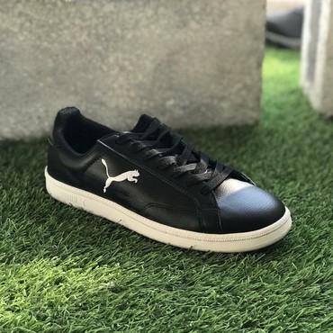 Кроссовки и спортивная обувь - Кок-Ой: Мужские кроссовки Puma