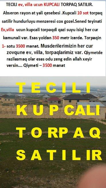 Bakı şəhərində Tecili ev, villa ucun kupcali torpaq satilir. Abseron rayon at yali