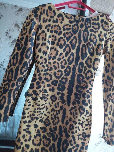 qhvyi donlar - Azərbaycan: Baliq modelde leopard don arxası razrez.Real alıcıya endrim edəcəm