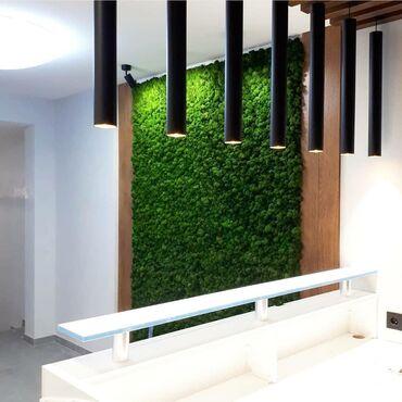 Мох Бишкеке вертикальный озеление Стабилизированный мох бысто