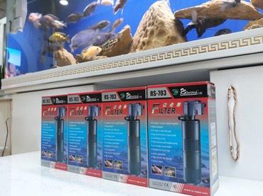 filtir - Azərbaycan: Rs 703 filtir 18wat 2 qubkali  bawqalarida var