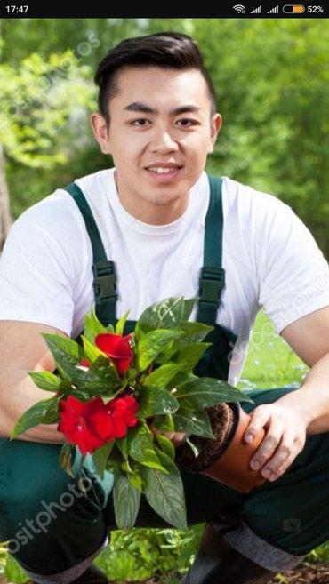 В частный особняк требуется садовник ,желательно с проживаем. в Бишкек