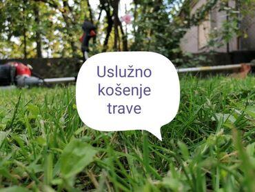Trimeri - Srbija: Kosenje trave  Usluga kosenja trave trimerom i kosačicom.  Srem, Beog