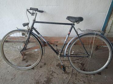 Спорт и хобби - Красная Речка: Велосипеды