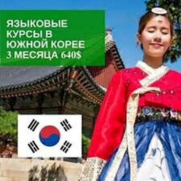 Обучение в Южной Корее. Языковые курсы при Вузе.Помошь в подготовке на