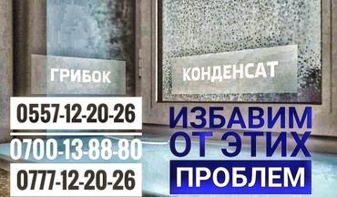 Работаем чётко, без посредников, в Бишкек
