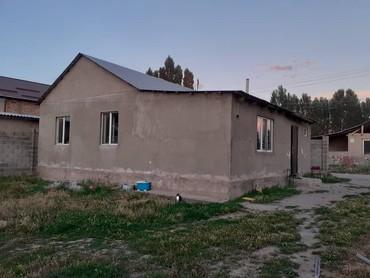 Тез арада Акбосого конушунан 4 в Бишкек