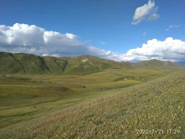 Great Wall - Кыргызстан: Great Wall 1992