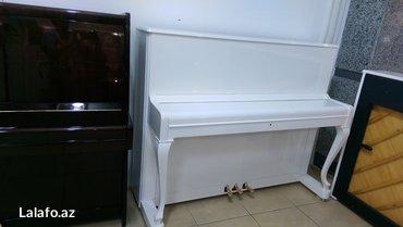 Bakı şəhərində Petrof Poloschip piano - nadir rastlanan modellerdendir. 5 il