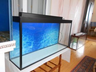 Bakı şəhərində Teze akvarium 100-50-25